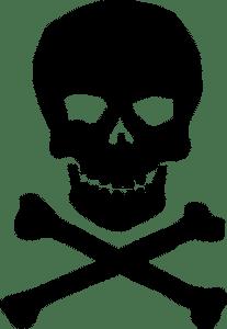 skull_n_bones_T